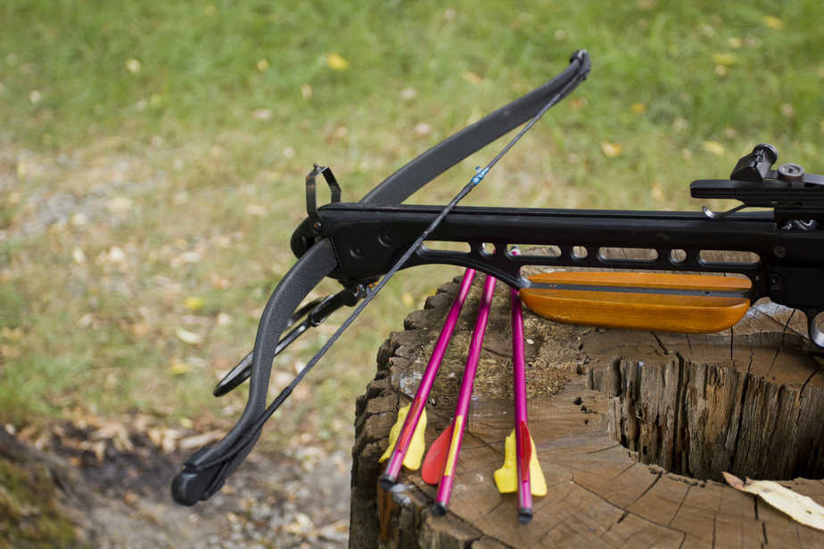 Best Pistol Crossbow for Hunting Small Game - Survival and more